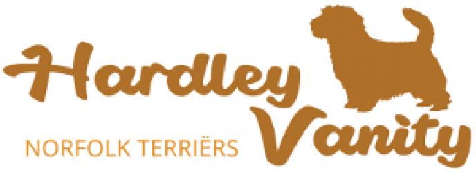 """Norfolk Terriër kennel """"Hardley Vanity"""""""